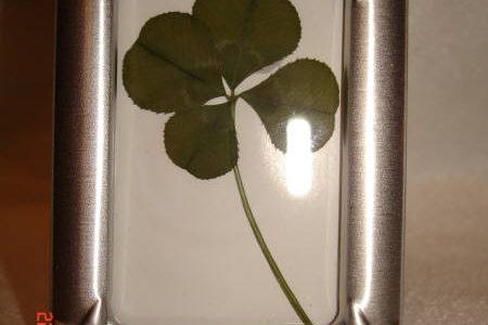 four leaf clover silver framed