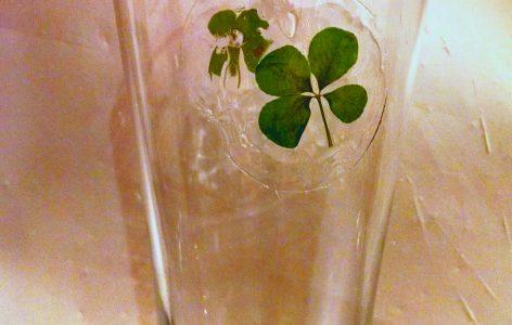 Four Leaf Clover Pilsner Glass