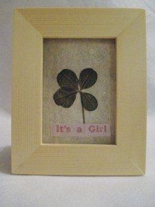 four leaf clover framed